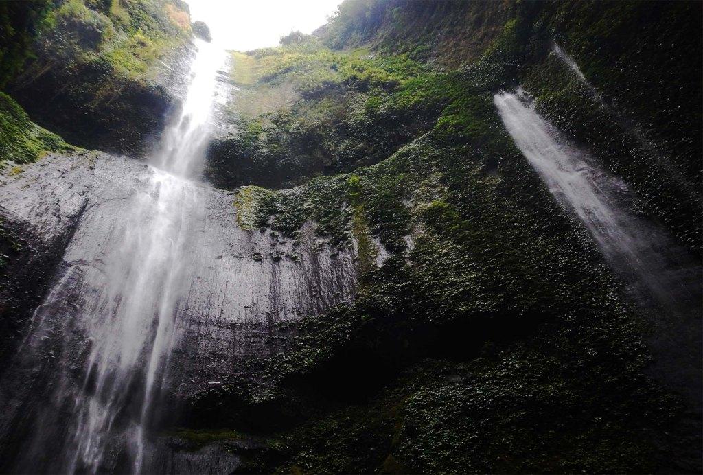 Air Terjun Madakaripura Probolinggo Tertinggi Indonesia Wisata Mandakaripura Taman Hutan