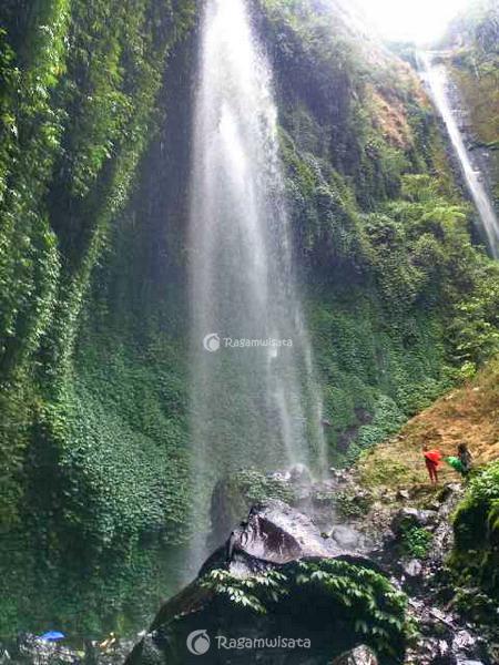 Air Terjun Madakaripura Probolinggo Tertinggi Pulau Jawa Taman Hutan Kab