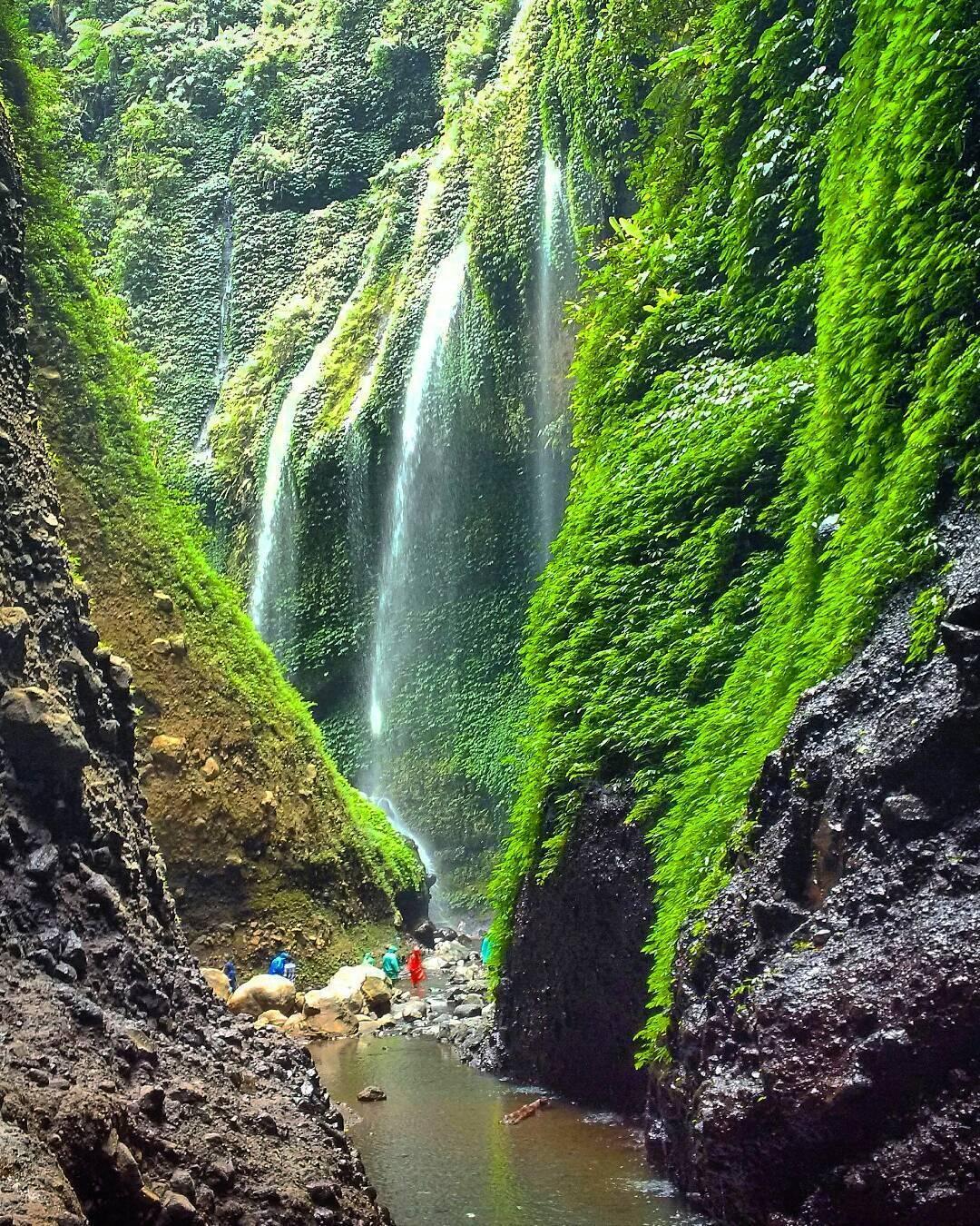 Air Terjun Madakaripura Tawarkan Hujan Abadi Eksotis Image Source Taman