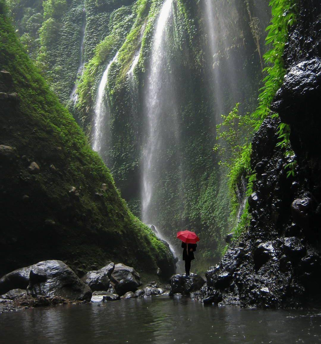 Air Terjun Madakaripura Tawarkan Hujan Abadi Eksotis Taman Hutan Kab