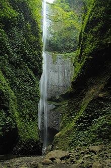 Air Terjun Madakaripura Wikipedia Bahasa Indonesia Ensiklopedia Bebas Taman Hutan