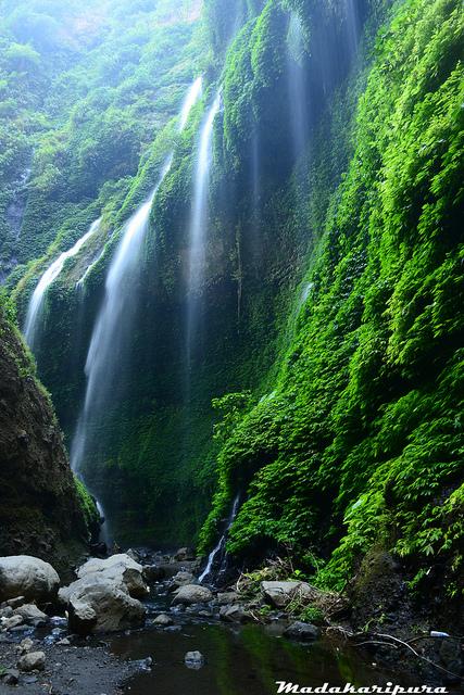 Kecamatan Lumbang Perjalanan Tongas Madakaripura Penuh Pemandangan Bagus Jalan Tidak