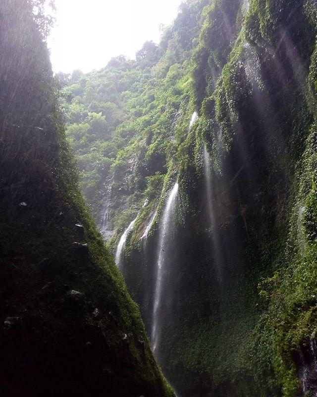 Suguhan Alam Jawa Timur Lewat 12 Air Terjun Keren Tujuan