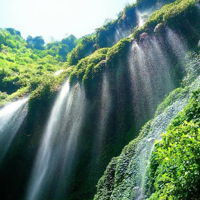 Terjun Madakaripura Salah Satu Air Indah Jawa Timur Taman Hutan