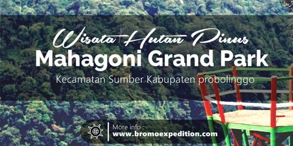 Wisata Mahagoni Grand Park Probolinggo Bromo Expedition Taman Hutan Madakaripura