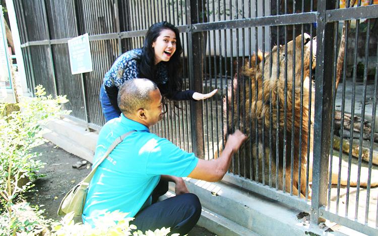 Probolinggo City Tourism Park Environmental Studies Sejarah Taman Wisata Study