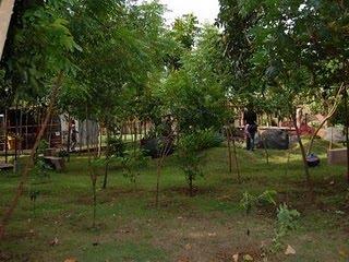Probolinggo Kotaku Asri Twsl Taman Wisata Studi Lingkungan Study Kab