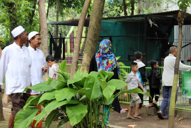 Rencana Perluasan Twsl Bonbin Kebun Binatang Taman Wisata Study Lingkungan