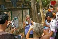 Taman Bersantai Probolinggo Kota Menawarkan Objek Wisata Mengagumnkan Studi Lingkungan