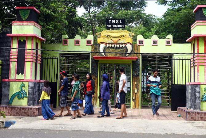Tempat Wisata Diserbu Pengunjung Twsl Bonbin Kebun Binatang Taman Study