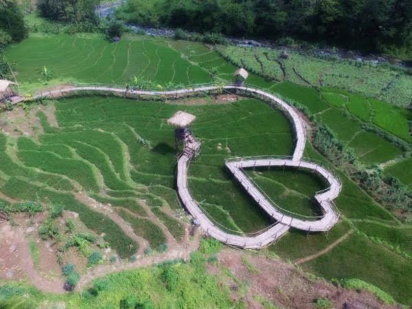 Jembatan Cinta Pring Wulung Desa Panusupan Hasil Gambar Kab Purbalingga