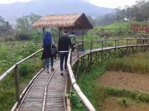Jembatan Cinta Pringwulung Purbalingga Youtube Pring Wulung Kab