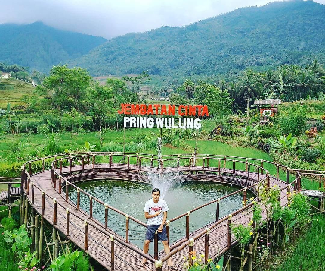 Rute Lokasi Jembatan Cinta Pring Wulung Panusupan Spot Foto Kab