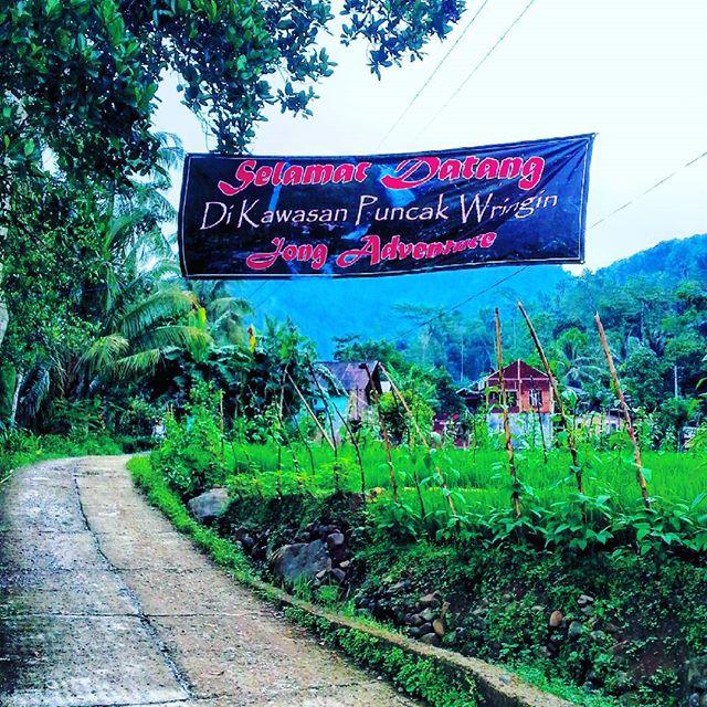 Wisata Alam Kecamatan Rembang Purbalingga Jateng Jembatan Cinta Pring Wulung