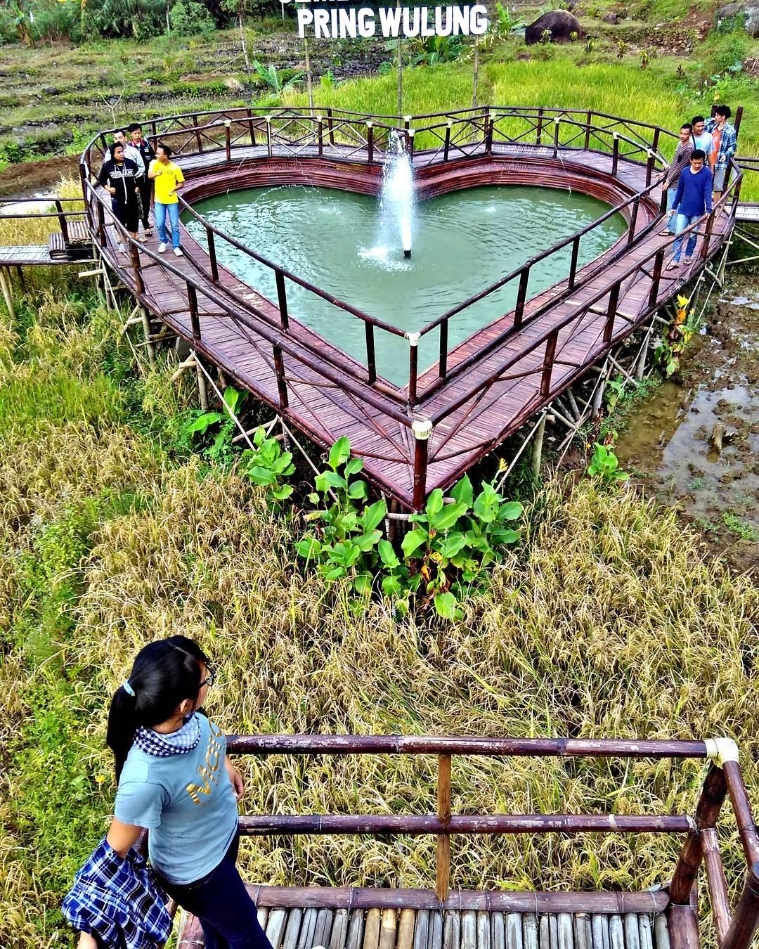 Wisata Jembatan Cinta Pring Wulung Bakpia Mutiara Jogja Kab Purbalingga