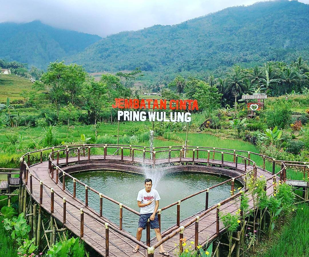Rute Lokasi Jembatan Cinta Pring Wulung Panusupan Spot Foto Pelangi