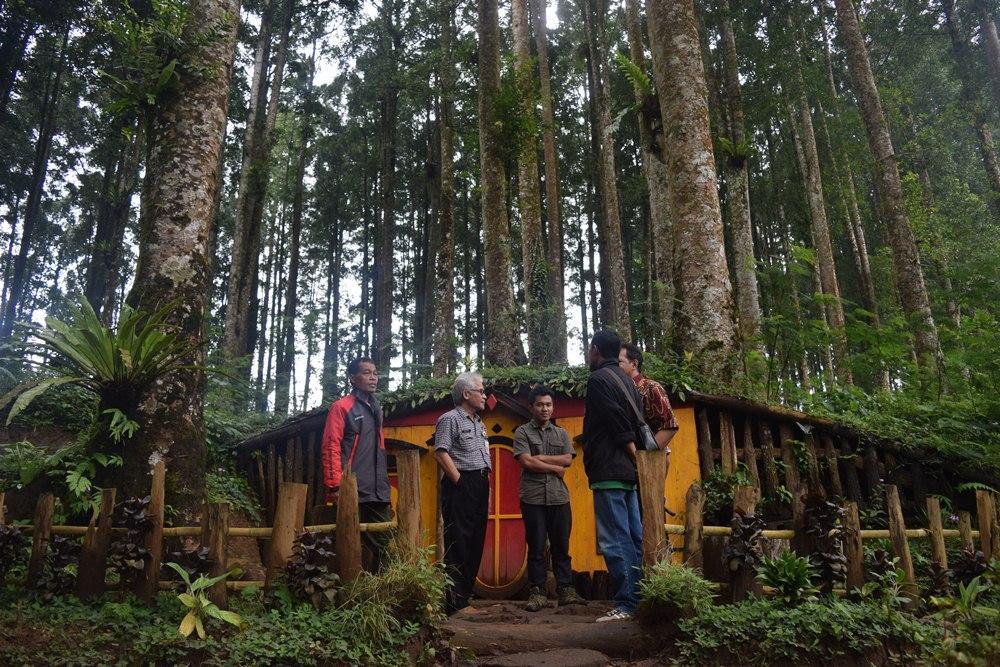 Bercengkerama Bawah Ringdangnya Pohon Kampung Kurcaci Dinas Kab Purbalingga