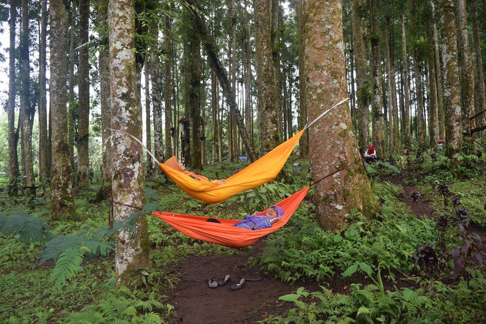 Bercengkerama Bawah Ringdangnya Pohon Kampung Kurcaci Dinas Tiduran Hamoc Kab