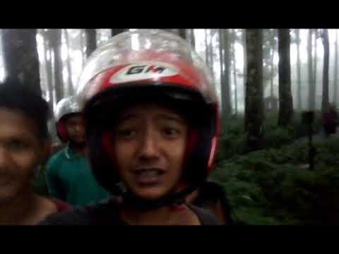 Kampung Kurcaci Curug Lawang Kab Purbalingga Youtube