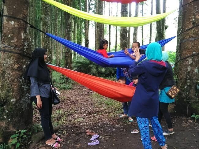 Kampung Kurcaci Purbalingga Indahnya Nyata Camping Ground Hammock Kab