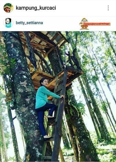 Kampung Kurcaci Purbalingga Wisata Ngehits Kota Perwira Rumah Pohon Kab