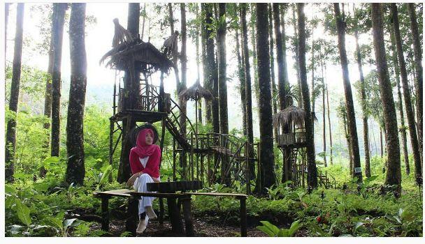 Nggak Bandung Rumah Ala Hobbit Purbalingga Foto Instagram Wisata Kampung