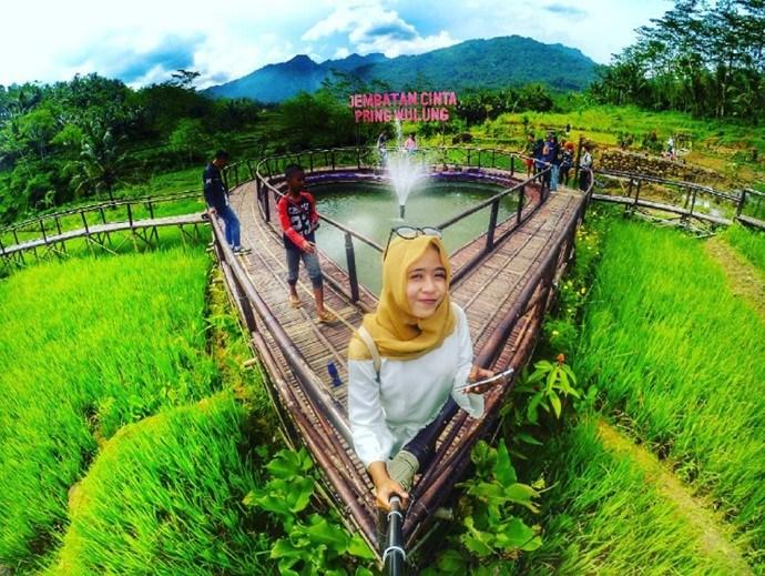 Panusupan Desa Wisata Andalan Purbalingga Traveling Yuk 2 Jembatan Cinta