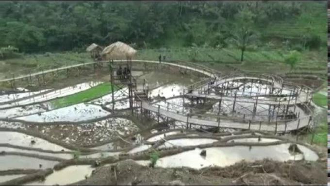 Pesona Jembatan Cinta Desa Wisata Panusupan Wajib Dikunjungi Purbalingga Pojok