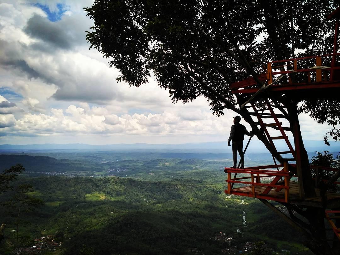 37 Obyek Wisata Purbalingga Instagramable Swamedium Rumah Pohon Igir Wringin