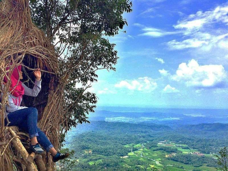 Lokasi Rute Menuju Puncak Sendaren Purbalingga Kece Abis Sibarat Kab