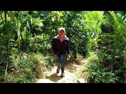 Wisata Curug Pecatan Bukit Sibarat Purbalingga Youtube Puncak Kab