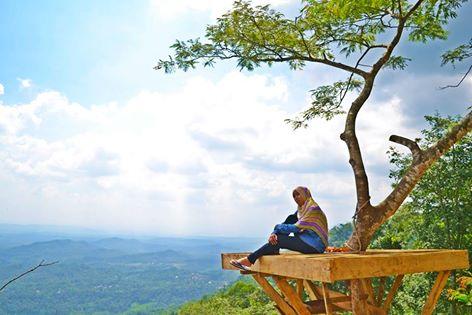 10 Alasan Desa Wisata Panusupan Food Traveling Rumah Pohon Kenangan