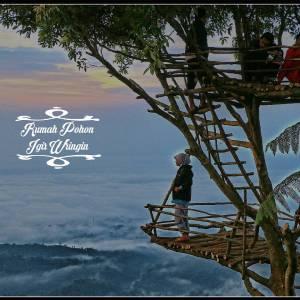 10 Lokasi Rumah Pohon Indonesia Kayupedia Informasi Dunia Kayu Igir