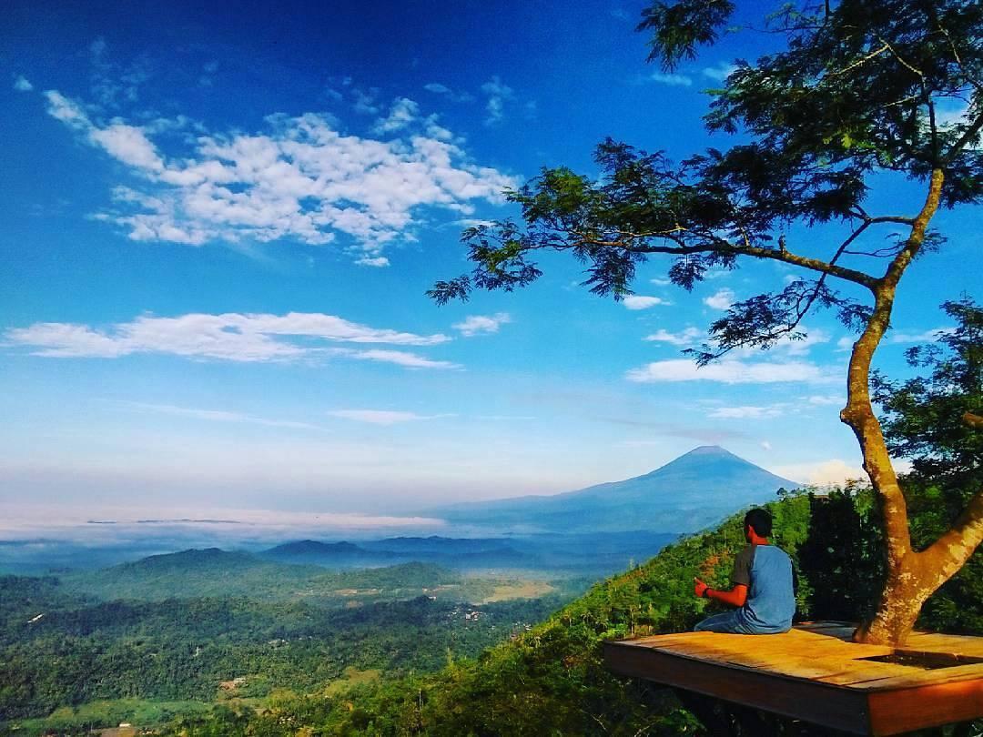 10 Spot Hits Instagramable Desa Wisata Panusupan Purbalingga Rumah Pohon