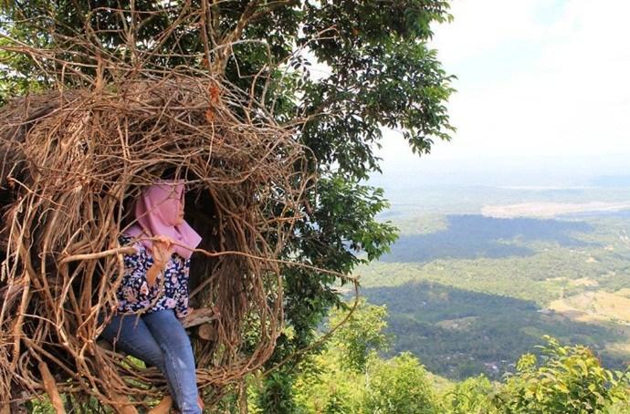 Panusupan Desa Wisata Andalan Purbalingga Traveling Yuk Rumah Sarang Burung