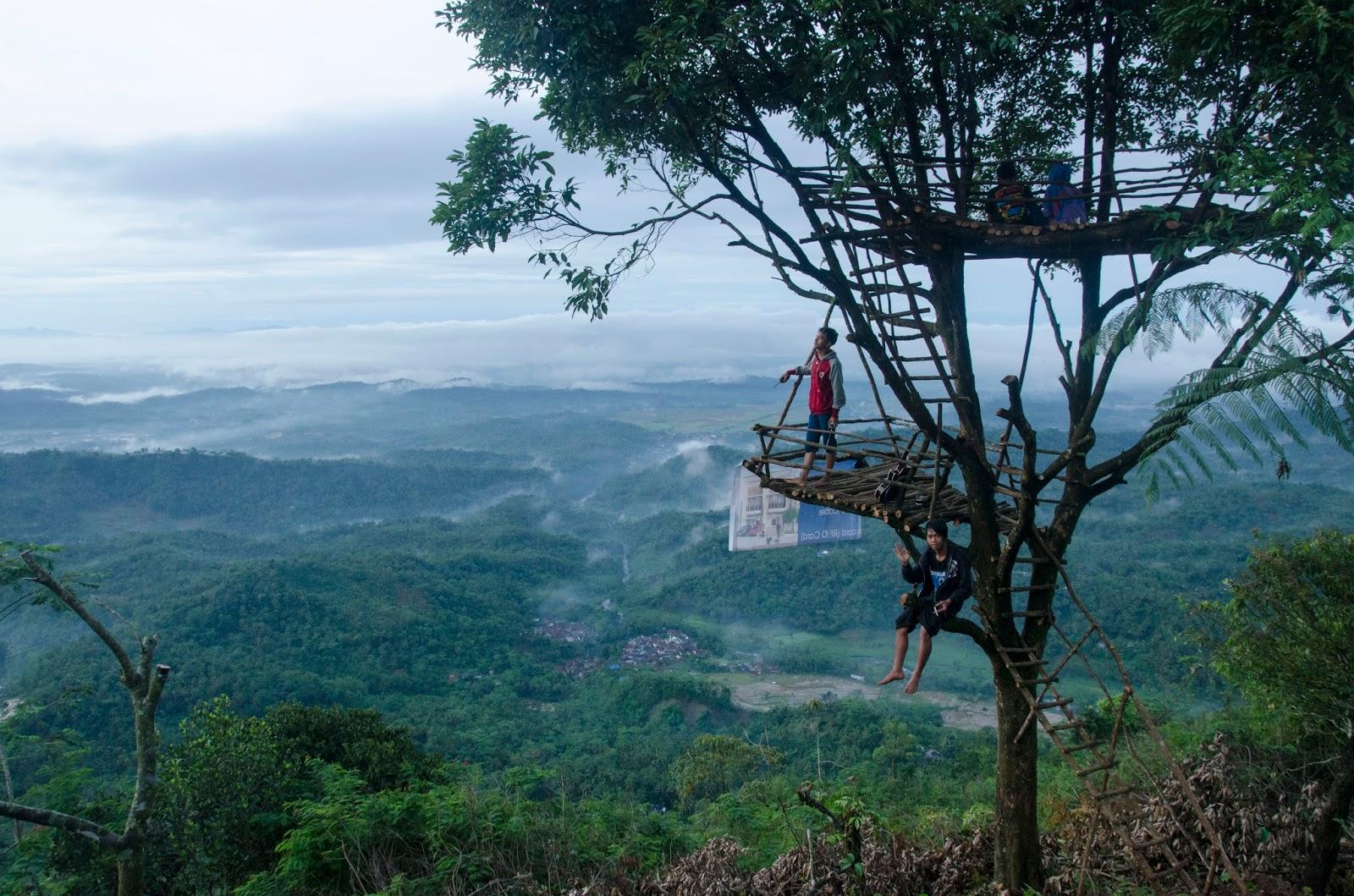 Pesona Rumah Pohon Desa Wisata Panusupan Wajib Dikunjungi Igir Wringin