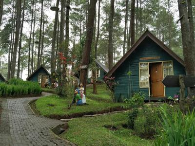 10 Gambar Rumah Kurcaci Glenmore Banyuwangi Purbalingga Lembang Bandung Magelang