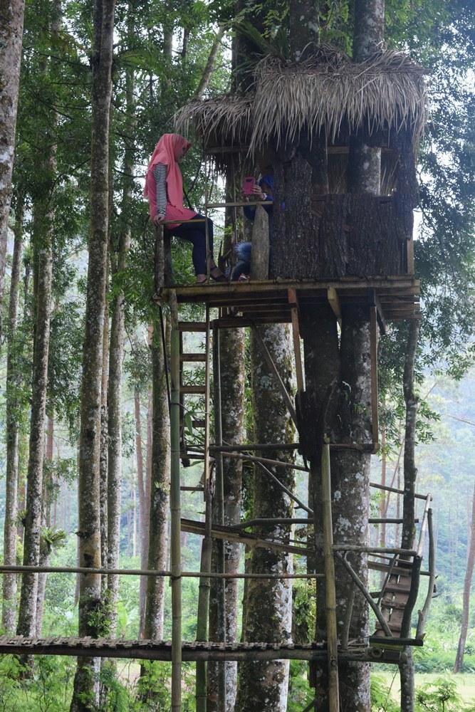 Bercengkerama Rumah Pohon Kampung Kurcaci Banyumasnews Ruman Kab Purbalingga