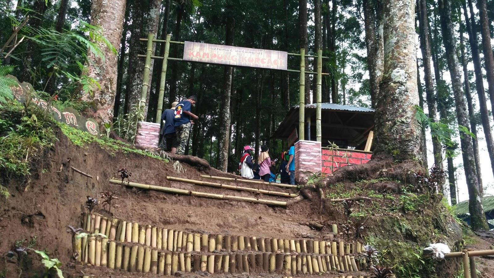 Kampung Kurcaci Purbalingga Desa Wisata Sragen Seo Online Menurut Setempat