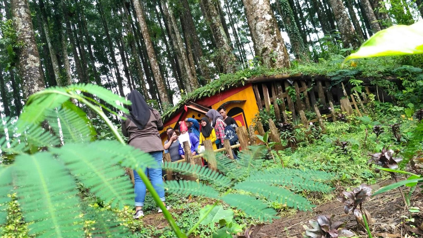 Kampung Kurcaci Purbalingga Desa Wisata Sragen Seo Online Sampai Kita