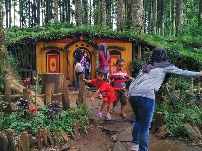 Kampung Kurcaci Purbalingga Indahnya Nyata Rumah Ruman Pohon Kab