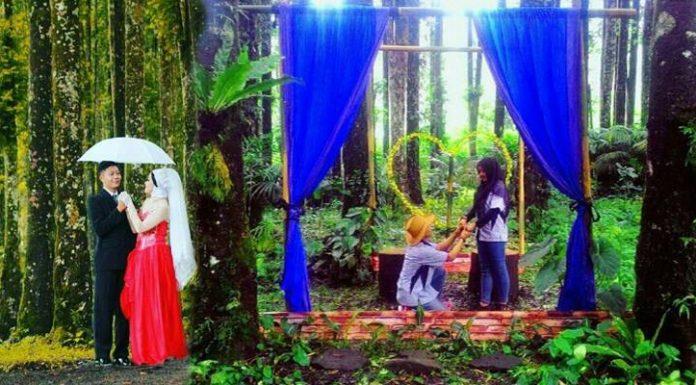 Kampung Kurcaci Wisata Alam Purbalingga Part 2 Romantic Corner Ruman