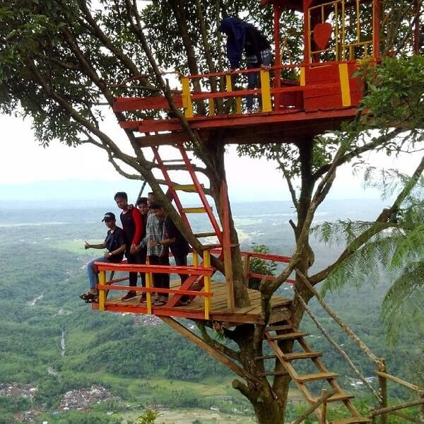 Limakaki Purbalingga Segala Keindahan Alamnya Mempesona Ruman Pohon Kampung Kurcaci