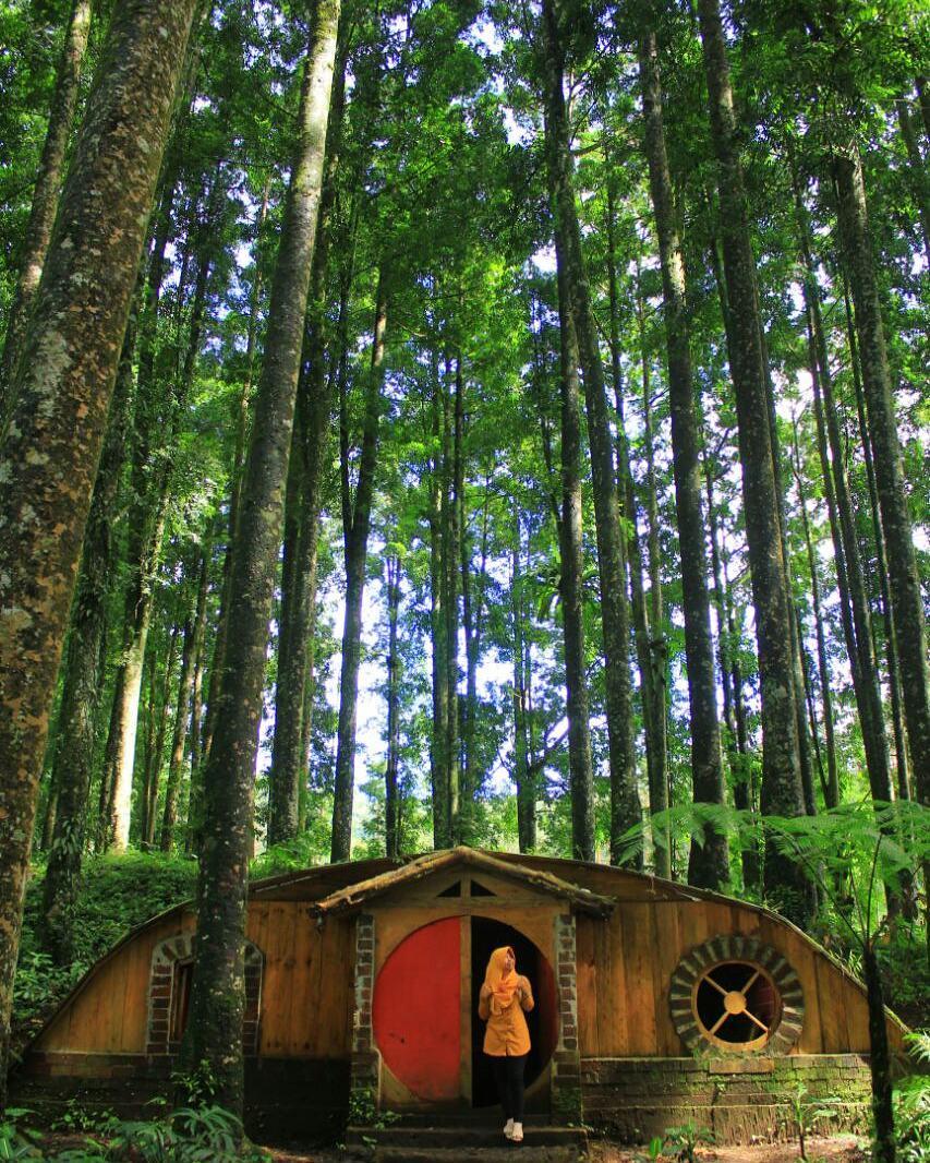 Lokasi Rute Harga Tiket Masuk Kampung Kurcaci Purbalingga Ruman Pohon