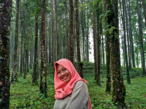 Makin Diminati Wisata Kampung Kurcaci Tambah Rumah Kesejukan Ruman Pohon