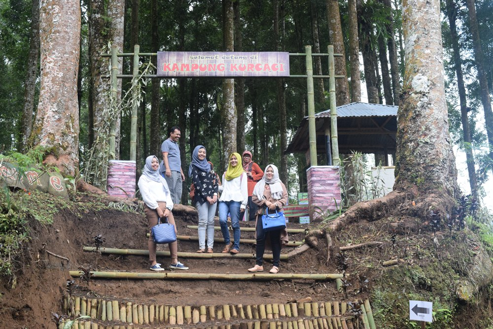 Menikmati Wisata Ala Hobbit Kampung Kurcaci Purbalingga Wisatawan Ruman Pohon