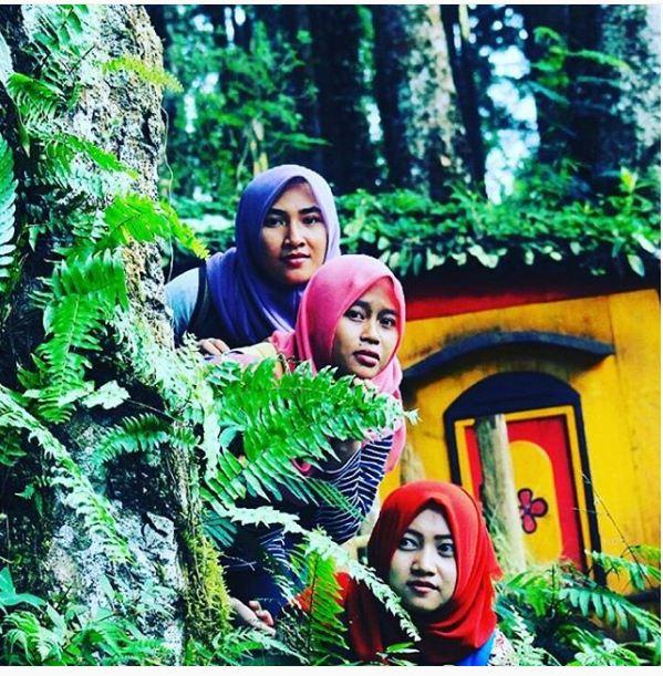 Nggak Bandung Rumah Ala Hobbit Purbalingga Foto Instagram Kampung Kurcaci