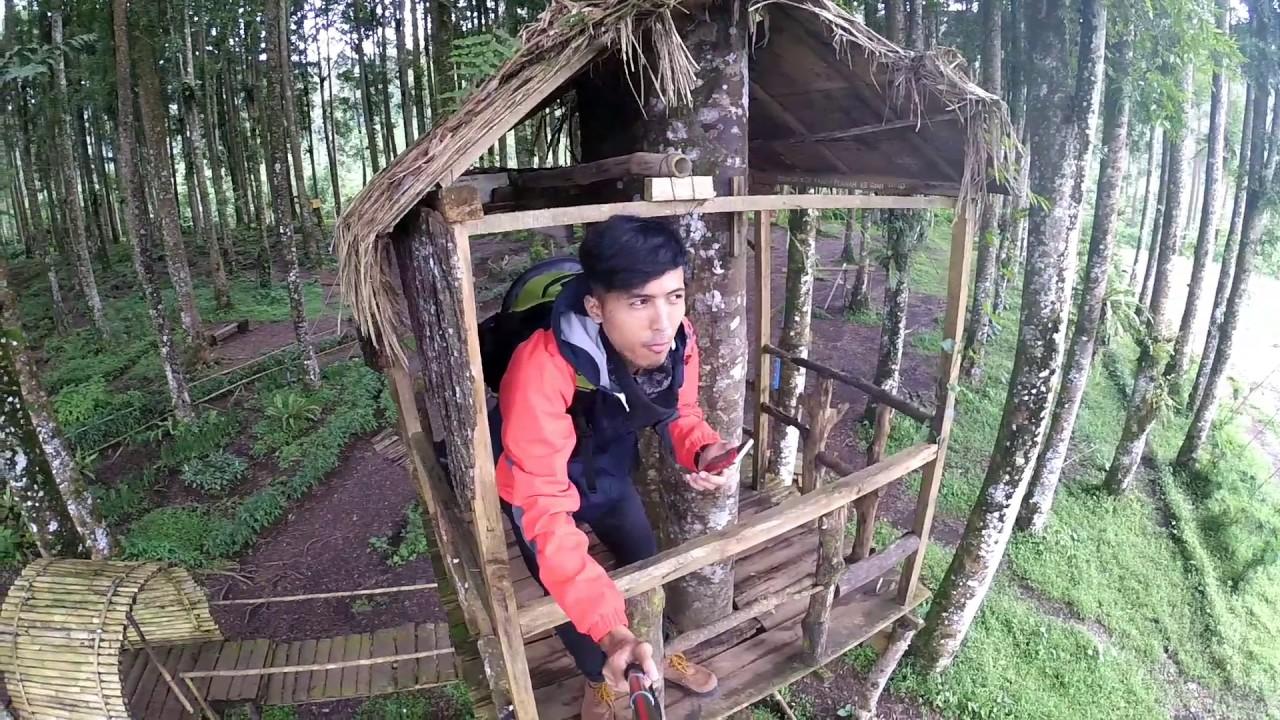 Travel Vlog25 Rumah Pohon Kampung Kurcaci Purbalingga Youtube Ruman Kab