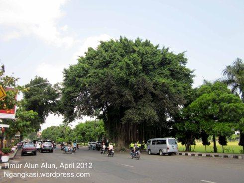 Membandingkan Alun Purworejo Tempoe Doeloe Blog Kota Sebagai Jantung Tempat
