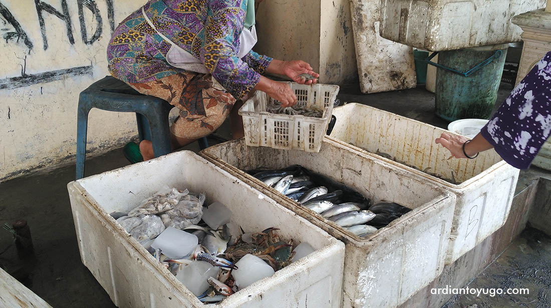 Wisata Pantai Jatimalang Purworejo Sea Food Ardiantoyugo Kab
